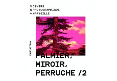 Exposition  « Palmier, Miroir, Perruche / 2 »